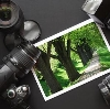 Фотоуслуги в Ворге