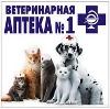 Ветеринарные аптеки в Ворге